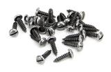 Pewter 6 x 1/2'' Round Head Screws (25) Image 1 Thumbnail