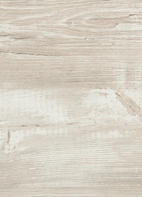 Cascina Pine Image 2